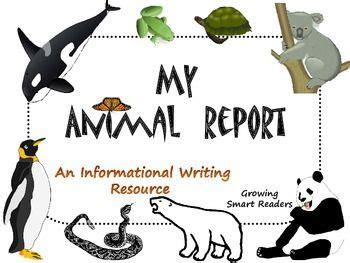 Expository Essay Outline ABC Essayscom